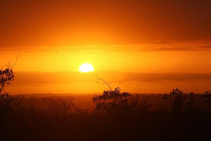 Morning-Kruger-Park-Safaris