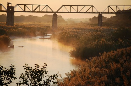 bridge Kruger