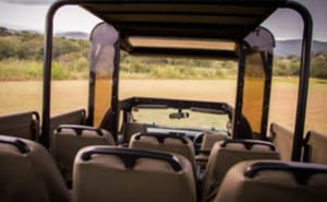 open vehicle game drives kruger