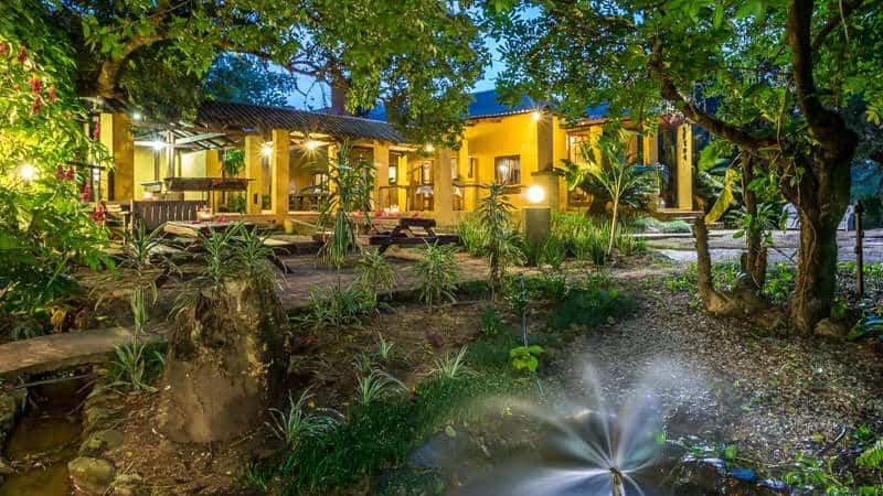 south africa kruger park safari
