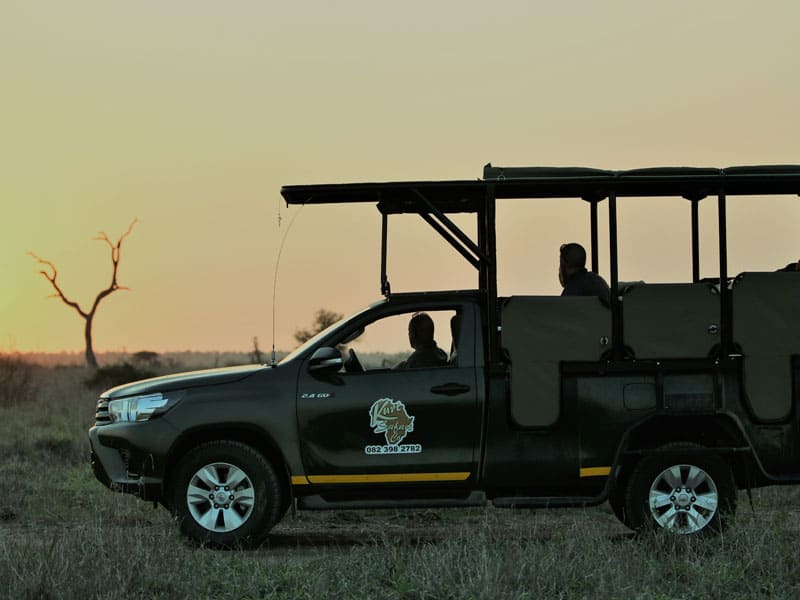 Kruger private safari