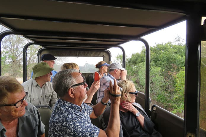 kruger park safaris open car