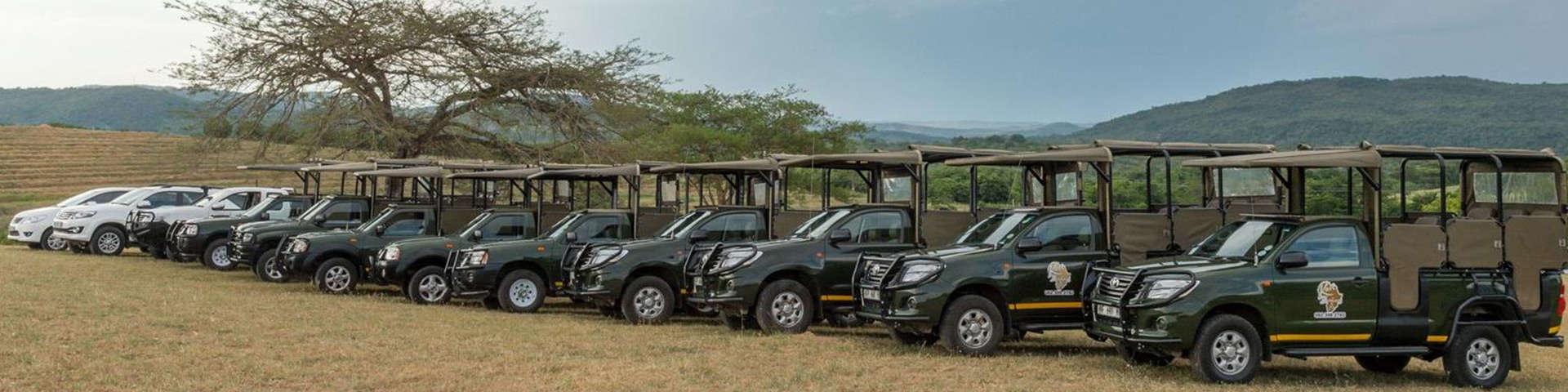 Kurger National Park Safaris
