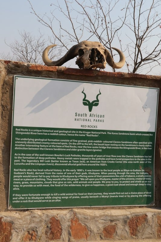 kruger park safari tour