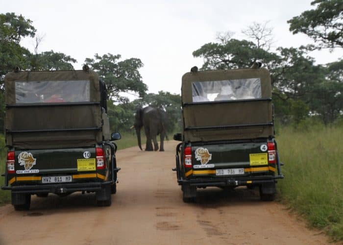 Private full day Kruger safari