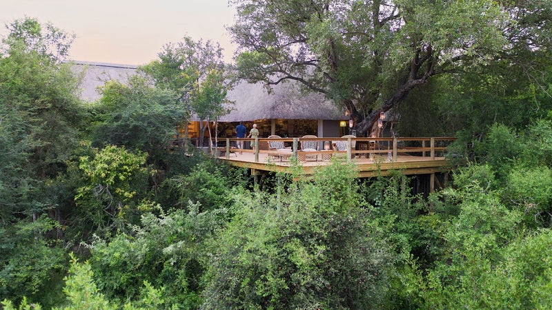 Londolozi Pioneer Camp