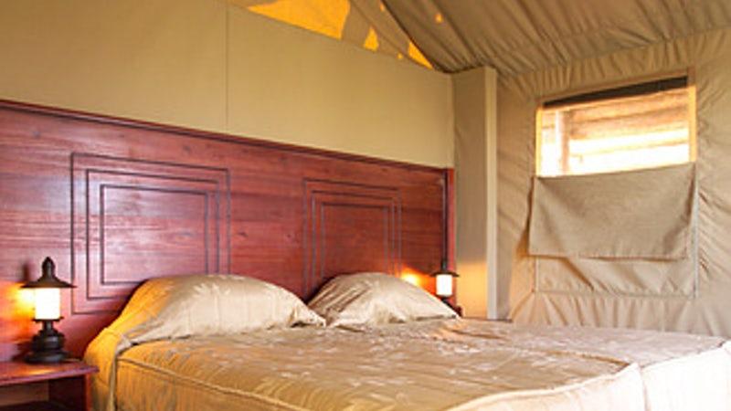 Punda Maria Rest Camp - Safari Tent 4